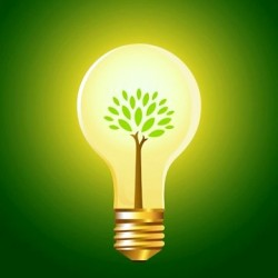 green-division-green-lightbulb1-250x250